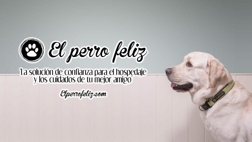 Foto de El Perro Feliz